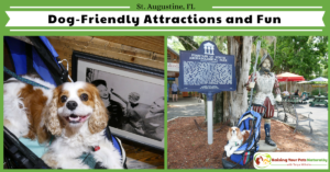 Traveling with Dogs in St. Augustine, Florida- Dog-Friendly Guide to St. Augustine, Florida