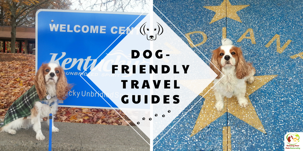 I'm putting together a #DogFriendlyTravelGuide for each state. Contact me to be included if you have a #DogFriendly business. #TravelGuide #Tourism #TravelBloggers