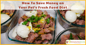How To Save Money on Your Pet's Fresh Food Diet | Saving Money on Your Dog's Raw Food