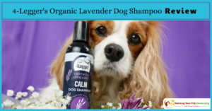 What to do for dogs dry skin: 4-Legger's USDA Certified Organic Lavender Dog Shampoo Review