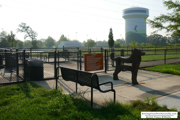 Off-leash dog parks in the Midwest
