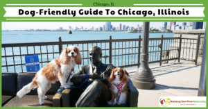 Dog-Friendly Vacations in Chicago. A Day in the City of Chicago, Illinois with Dogs.