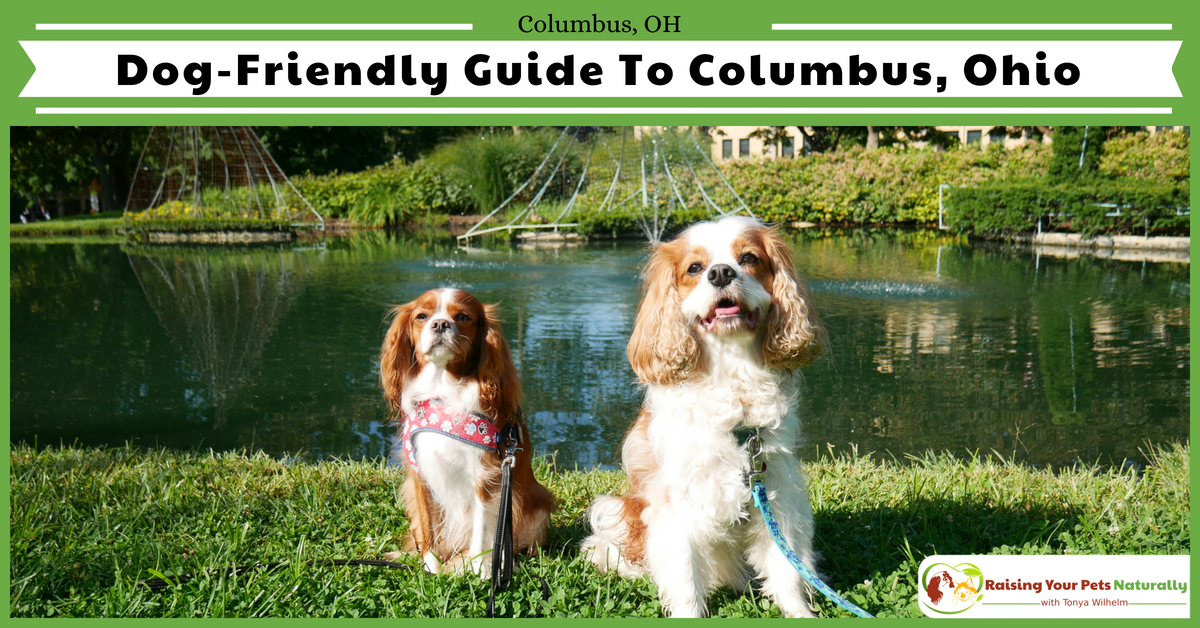 Dog-Friendly Vacations in Columbus, Ohio  Pet-Friendly Hotel