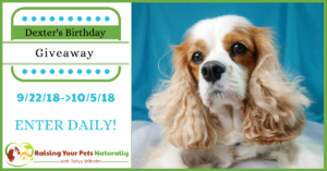 Dexter The Dog's Birthday Blog Giveaway Pet Contest 2018