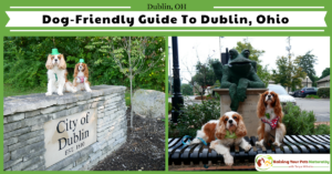 Dog-Friendly Dublin, Ohio Day Trip. Dog-Friendly Ohio Vacations and Day Trips. Bonus Video