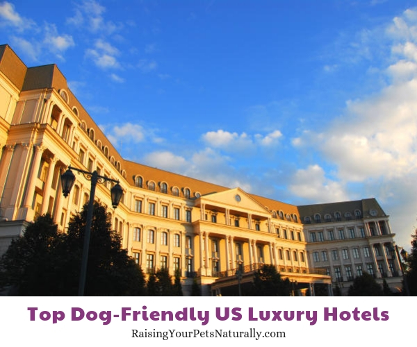 Pet friendly resort hotels in Pennsylvania