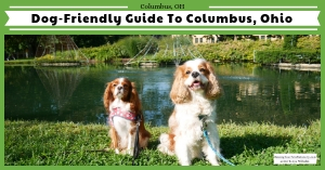 Dog-friendly Columbus, Ohio road trip