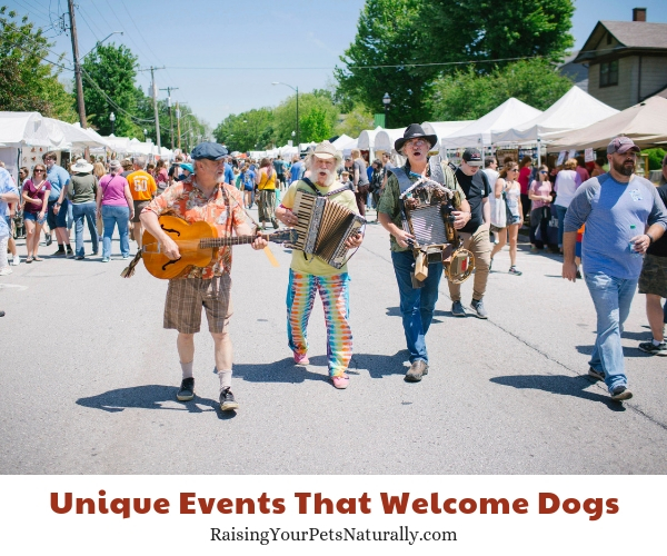 Dog-friendly Springfield, Missouri-