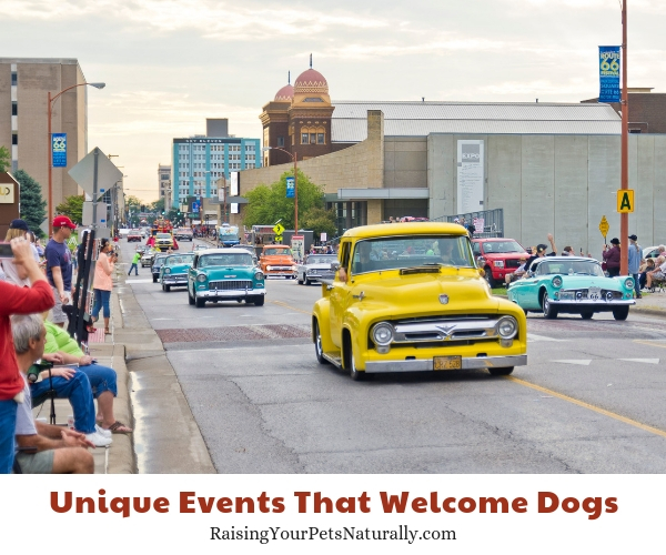Pet-friendly attractions in Springfield Missouri