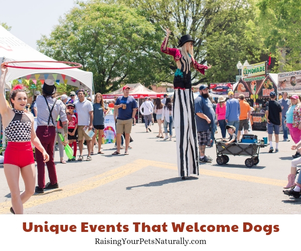 Dog-friendly Franklin, Tennessee