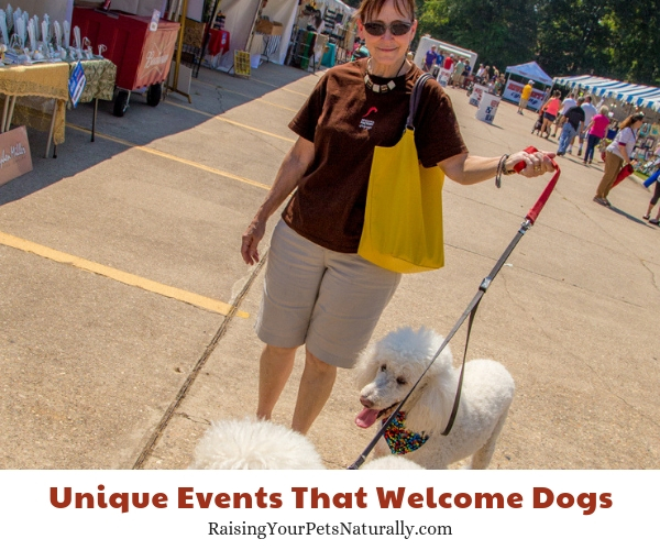 Festivals to take your dog to in Louisiana