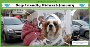 Traveling with dogs in the Midwest during winter. Dexter's Epic Dog-Friendly Road Trip January 2019