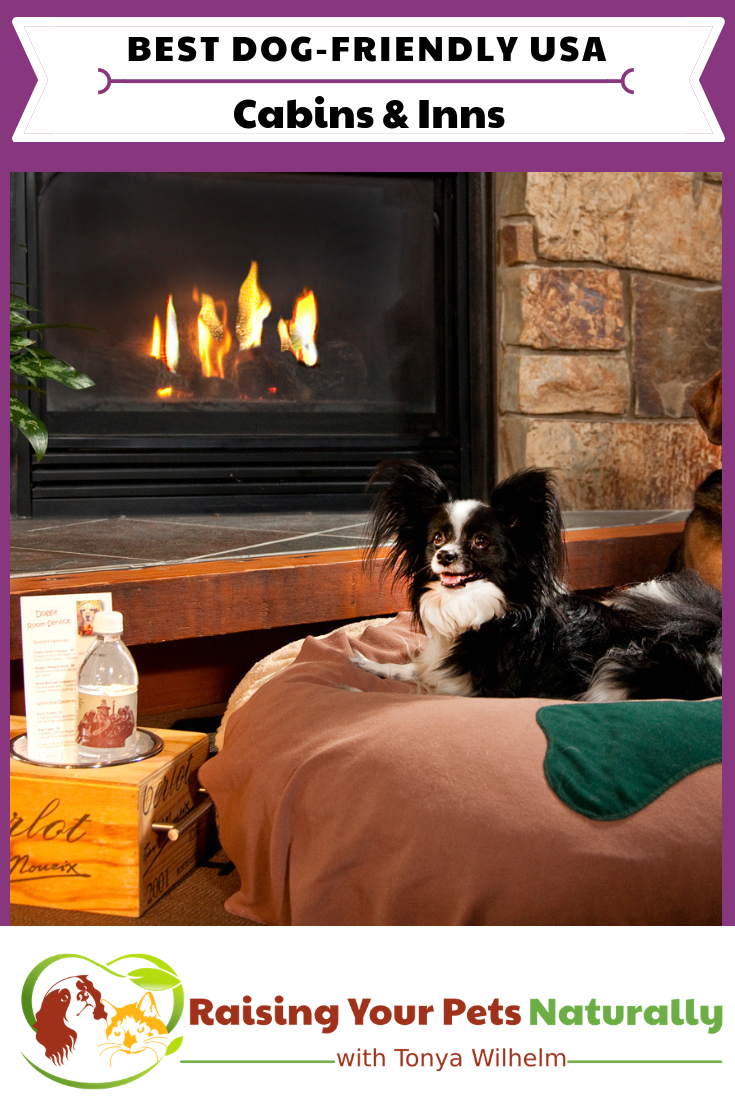 The Best Dog-Friendly Cottages, Lodges, Cabins, and B&B Resorts in the US. #raisingyourpetsnaturally #dogfriendly #travelingwithdogs #dogfriendlycabins #dogfriendlyb&B