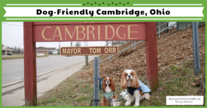 Dog-Friendly Vacations in the Midwest – Cambridge, Ohio | Dog-Friendly Restaurants and Landmarks