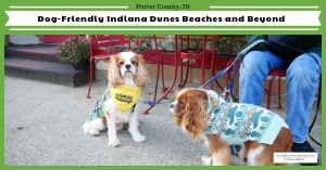 Dog-friendly Indiana Dunes and area