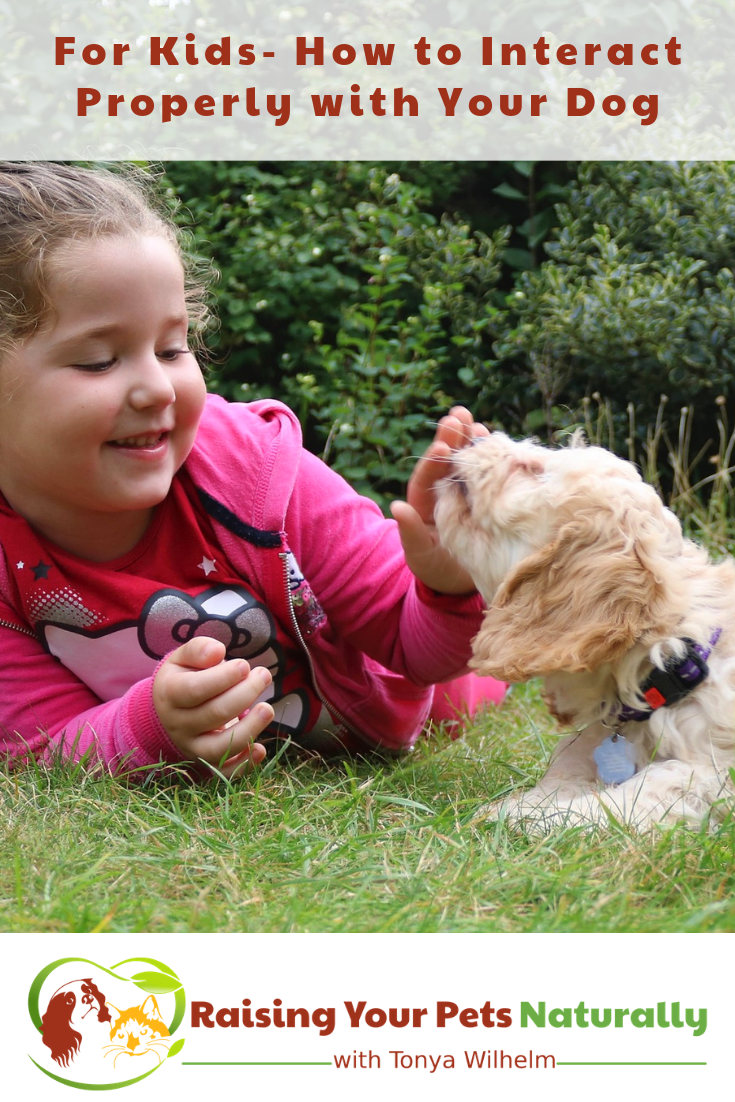 Teaching kids how to interact properly with their dog. #raisingyourpetsnaturally #kidsanddogs #dogsandkids