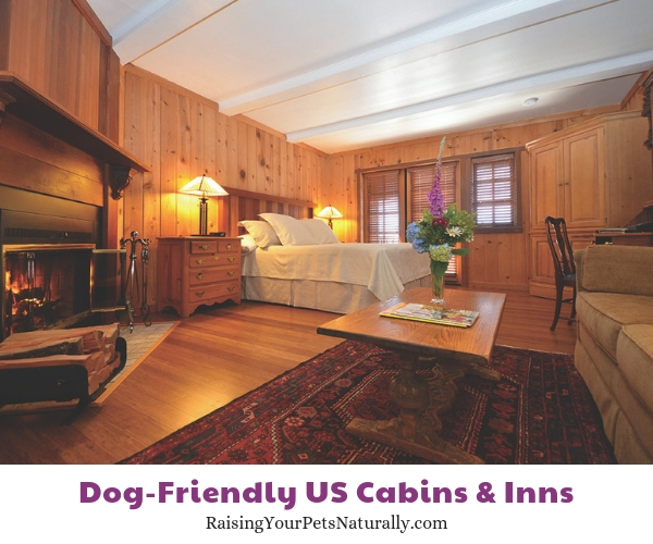 Pet-friendly resorts in CA