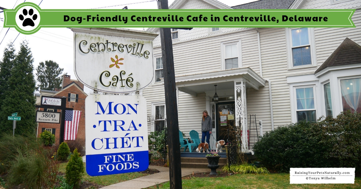 Dog-Friendly Restaurants in Delaware. INDOOR Dog-Friendly Centreville Cafe. #DextersDestinations #RaisingYourPetsNaturally