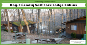 Dog-Friendly Vacations in the Midwest-Guernsey County, Ohio   Dog-Friendly Salt Fork Lodge Cabins and Park