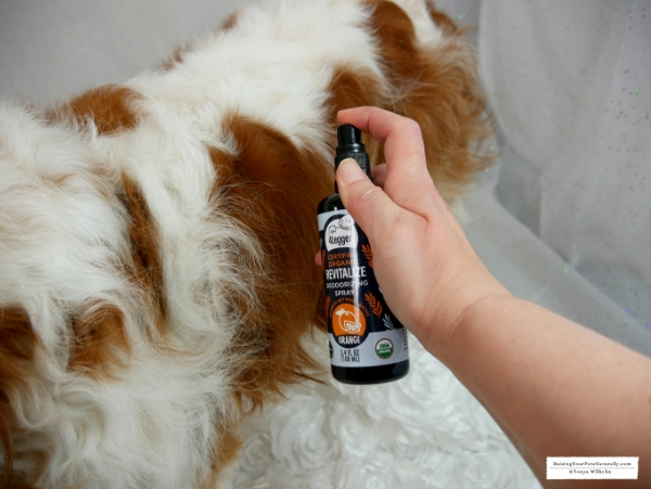 Organic Dog Perfume 4-Legger USDA Certified Organic Dog Deodorizing Spray Review. #raisingyourpetsnaturally