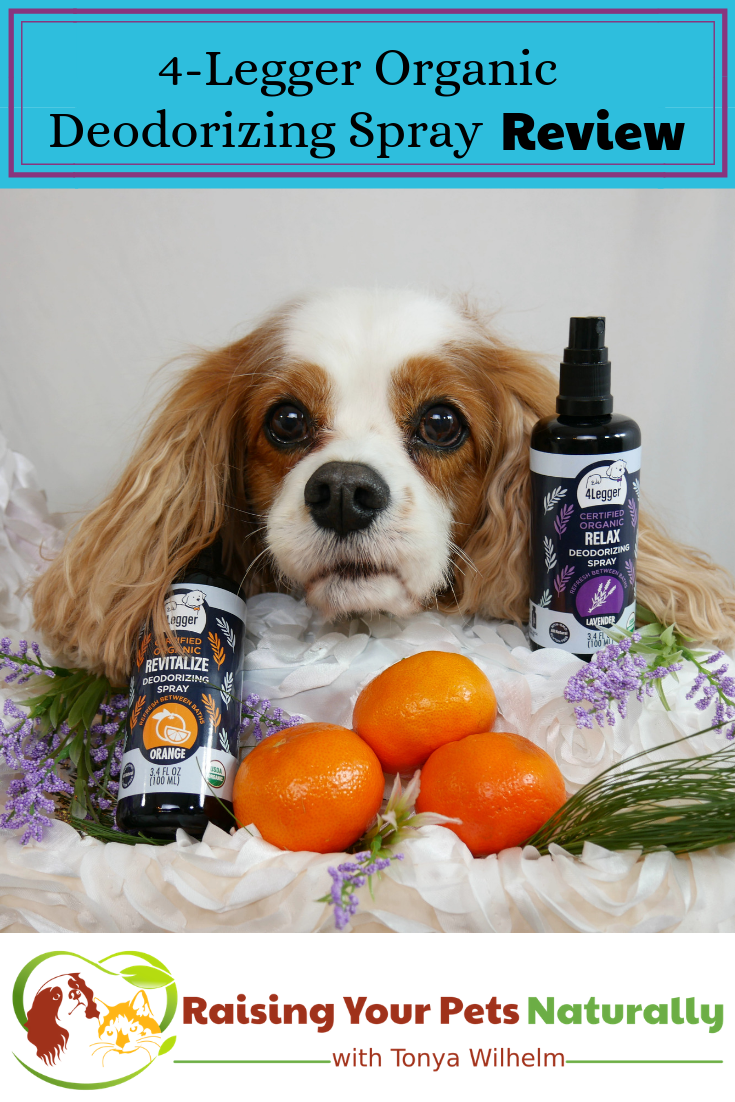 Organic Dog Perfume 4-Legger USDA Certified Organic Dog Deodorizing Spray Review. #raisingyourpetsnaturally #4legger #dogperfume #puppyperfume #dogperfumespray #bestdogperfume #dogcolgnespray