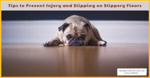 Are Hardwood Floors Safe for Your Dog? | Tips to Prevent Injury and Slipping on Slippery Floors