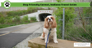 Dog-Friendly Carmel, Indiana | Dog-Friendly Hamilton County Indiana Travel Guide
