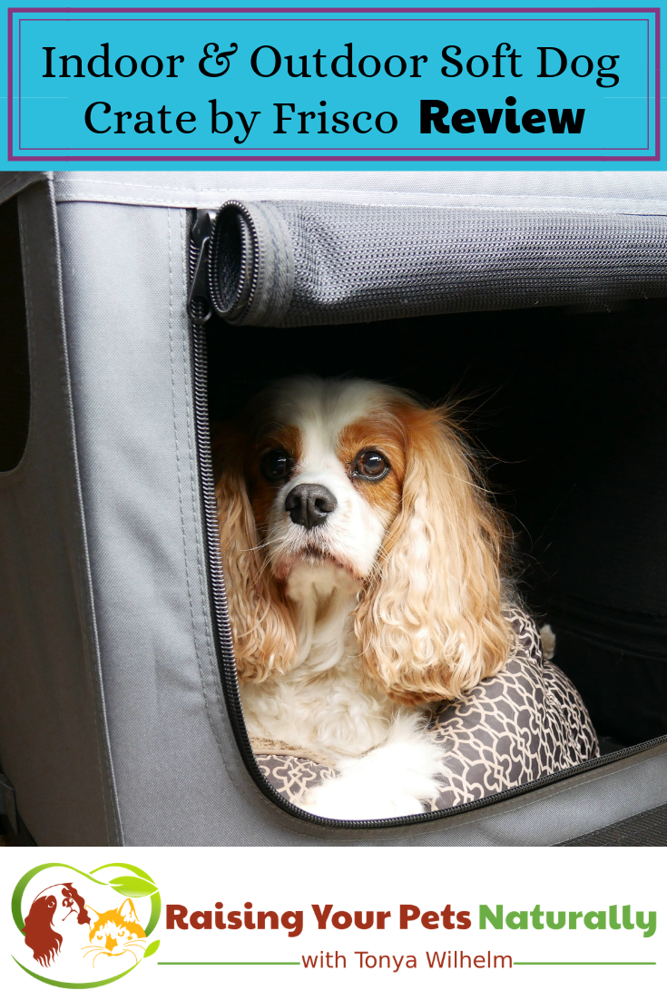 Best Dog Travel Crate Review. Safely Traveling with Pets in a Car. #raisingyourpetsnaturally #dogtravelcrate #travelingwithdogs #dogtravelkennel #dogtravelcarrier #bestdogcrate #travelingwithpetsincar #cartravelwithdogs