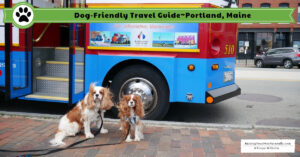 Pet-Friendly Portland Maine Travel Guide | Bucket List Dog-Friendly Travel