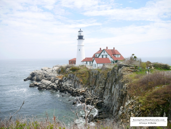 most photographed lighthouses