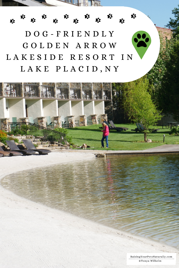Pet-Friendly Luxury Resorts in Lake Placid, New York | Dog-Friendly Golden Arrow Lakeside Resort Weekend Getaway