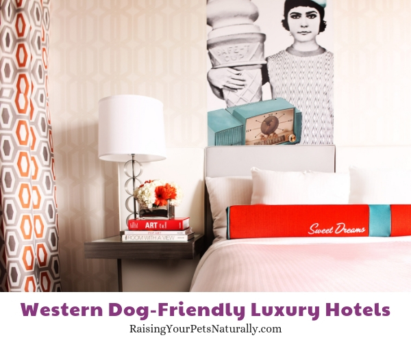 Denver Colorado luxury pet friendly hotels