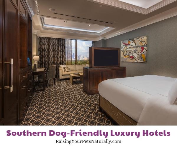 Houston luxury pet friendly hotels