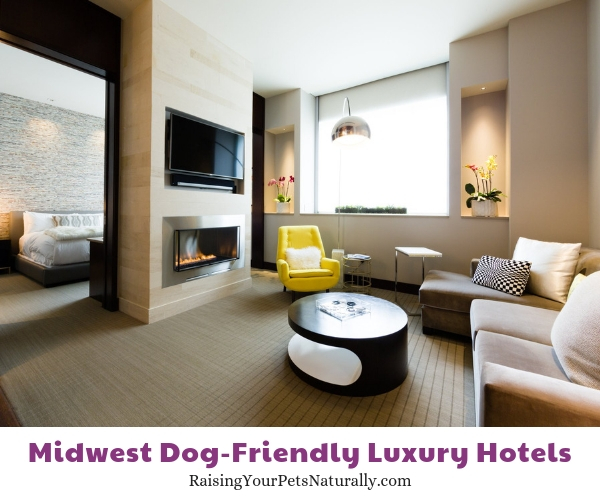 Indiana luxury dog-friendly hotels