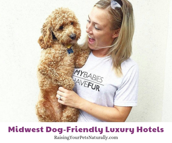 Midwest dog friendly hotels