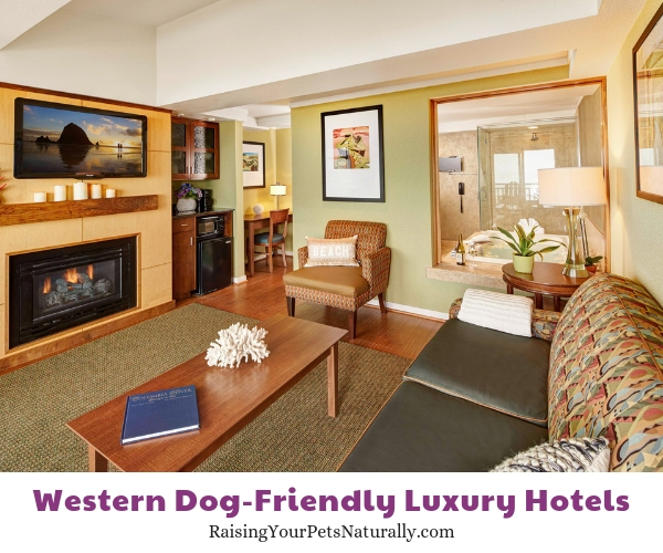 Cannon Beach pet-friendly resorts