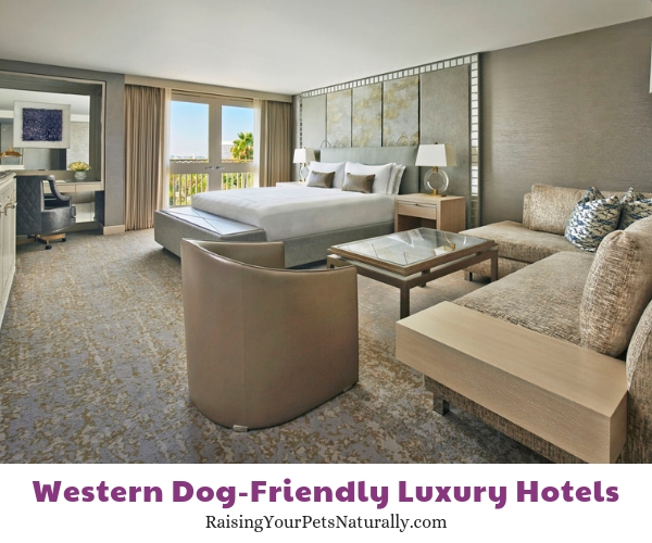 Five star Beverly Hills pet friendly