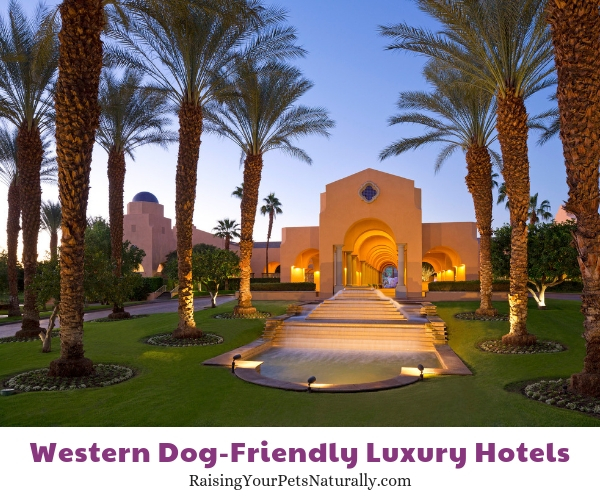 Rancho California dog friendly resorts
