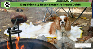 Dog-Friendly Travel Guide for New Hampshire | Raymond Area and Manchester New Hampshire Things to Do with a Dog