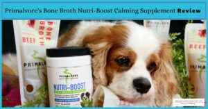 How to Help a Dog with Anxiety Naturally   Natural Dog Anxiety Medications and Supplements