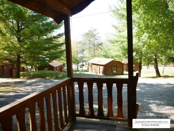 Pet-friendly cabins in Penn