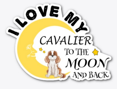 I love my cavalier to the moon and back