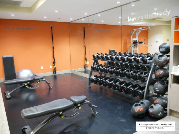 Hotels with a wellness gym