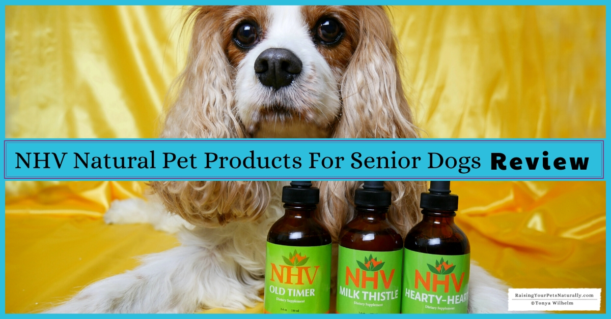 Best supplements for old dogs