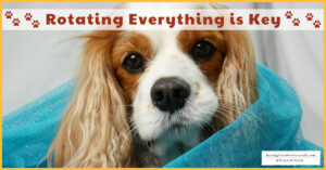 Rotating is Key   My Personal Theory on Rotating a Pet's Food, Supplements, and Everything!