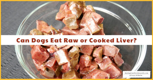Can dogs have raw liver